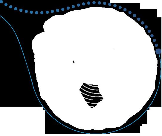 test-line21